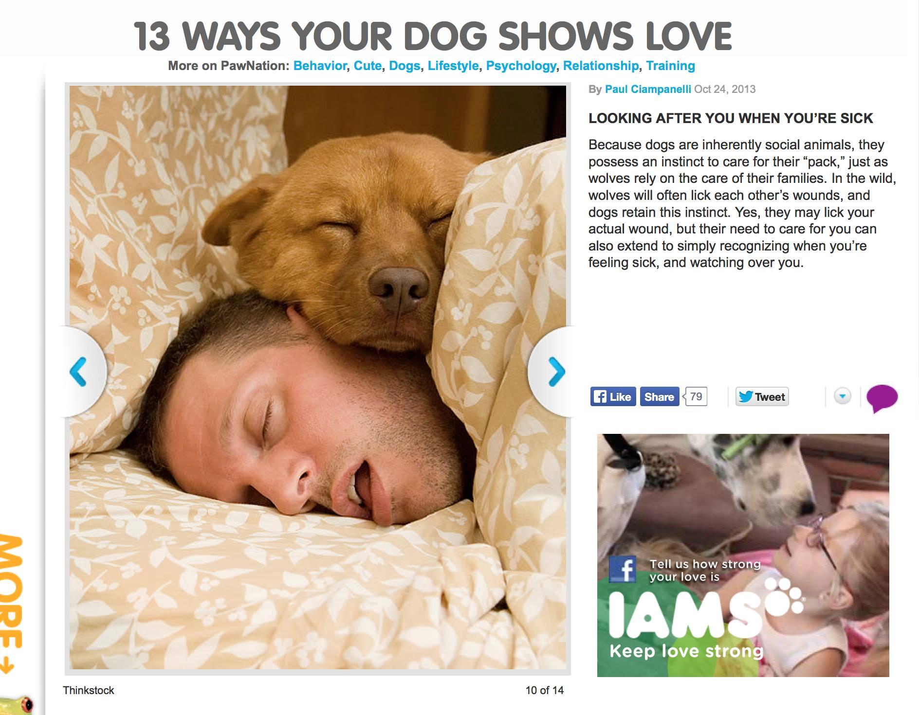 13-ways-your-dog-shows-love.jpg