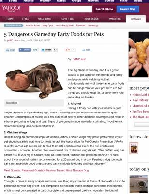 b2ap3_thumbnail_superbowl-food-dangerous-for-dog1.jpg
