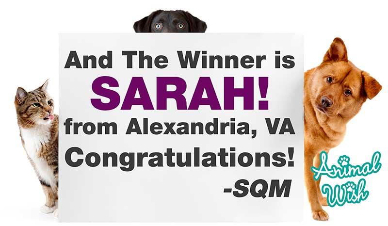 book-winner-SQM.jpg