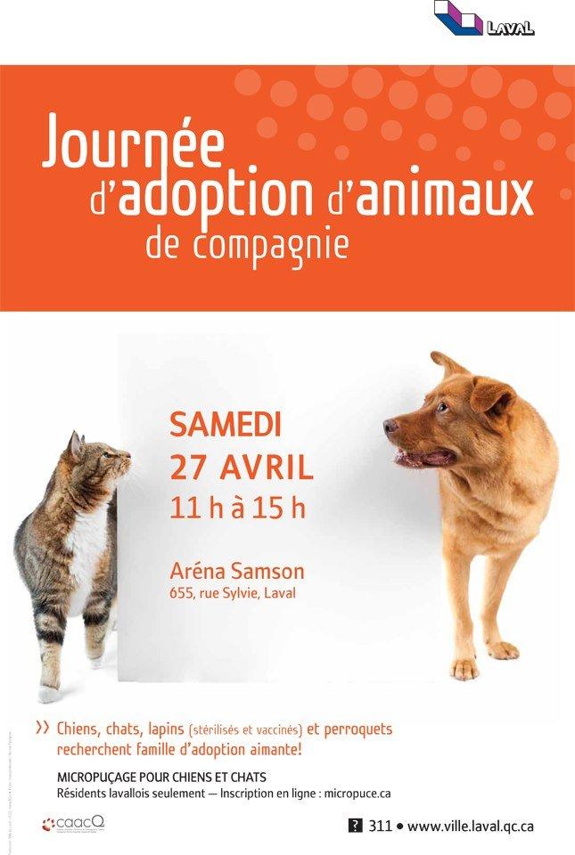 journee-d-adoption-danimaux-de-compagnie.jpg