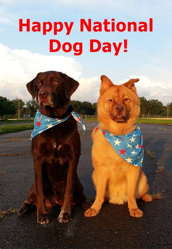 Happy National Dog Day - free image